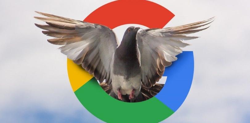 Google Pigeon