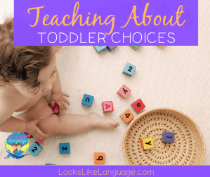 language development, behavior, choices, speech therapy