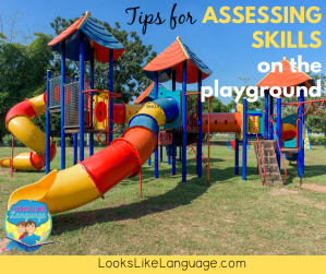 tips for assessing play skills on the playground