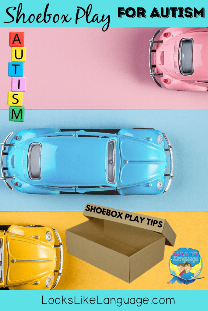 autism, car shoebox play, speech therapy