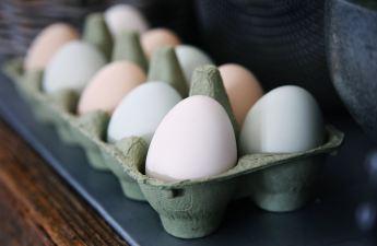Pressure, Raw Eggs & Community by Pearl Allard (Look Up Sometimes)
