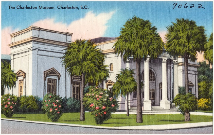 The Charleston Museum Postcard