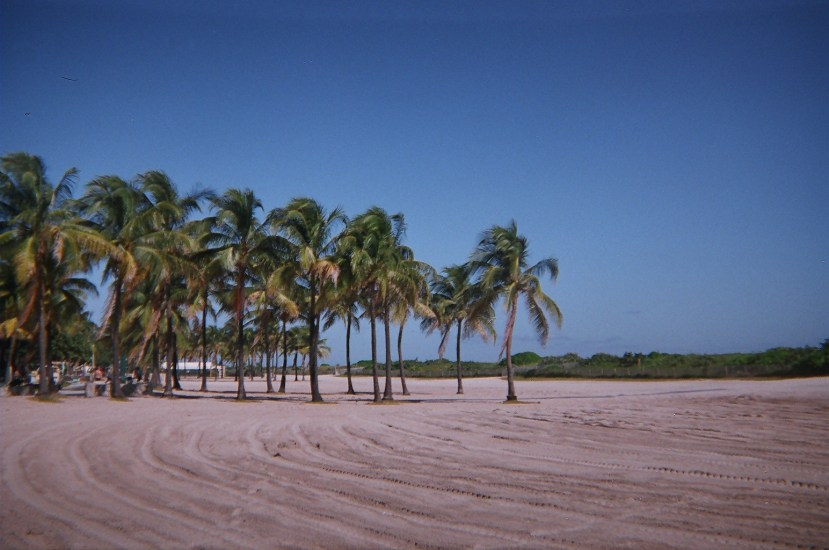While you are here at South Beach Florida, you must visit the Spanish Monastery.