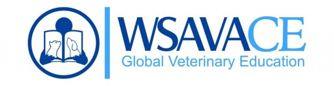 WSAVACE logo