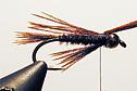 'Beady Eyed Pheasant' ~ step 7 :: The LOONS Flyfishing Club