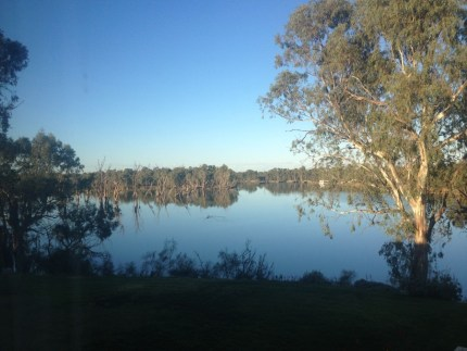 This was the view from the room window's. Murray river, Pelicans, flying fish, cod and the sky.