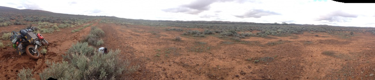 there is no one to help me..Beltana to Leigh Creek track!..killer!...sure, few roos visited me and left with no help!