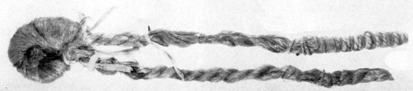 scythian-hair
