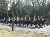 Palace Guard