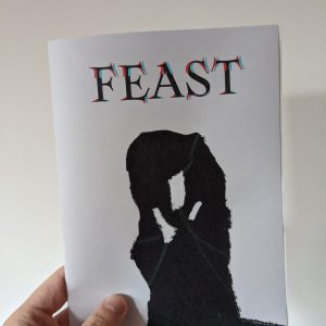 An A5 zine held against a plain white wall. The cover shows a silhouetted standing stone entwined with green vines under a header that reads FEAST.