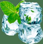 Maral Gel website