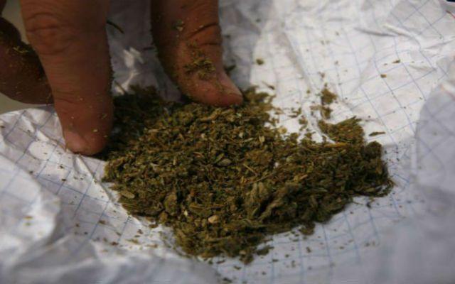 Confiscan más de 2 toneladas de mariguana en Sinaloa - foto de archivo