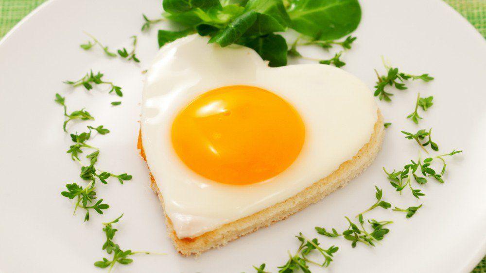 albumina de huevo para adelgazar