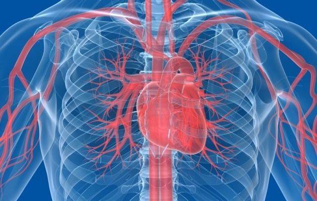 Enfermedades cardiovasculares son la primera causa de muerte en México - Foto de Internet