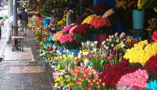 Profeco inicia operativo por Día de las madres - Flores