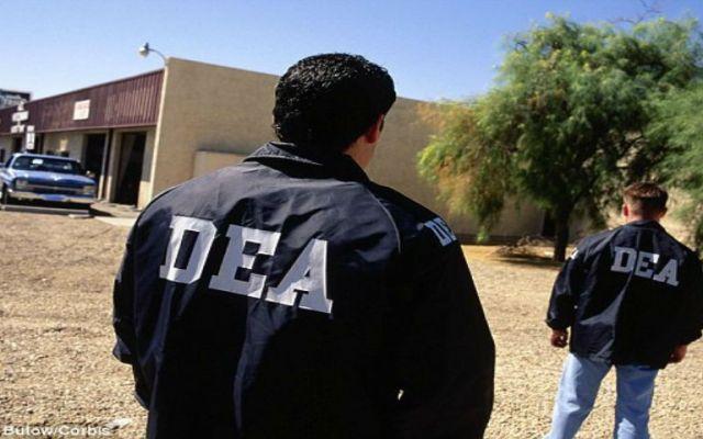 Detienen a 151 presuntos responsables de narcotráfico en EE.UU. - Foto de Dailymail.