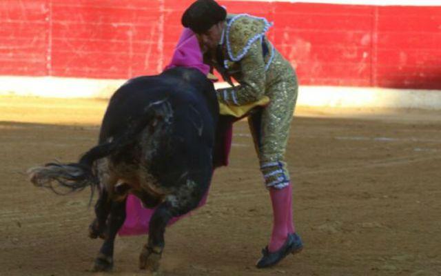 Paquirri sufre una cornada en el bajo vientre - Foto de El Semanario Taurino.