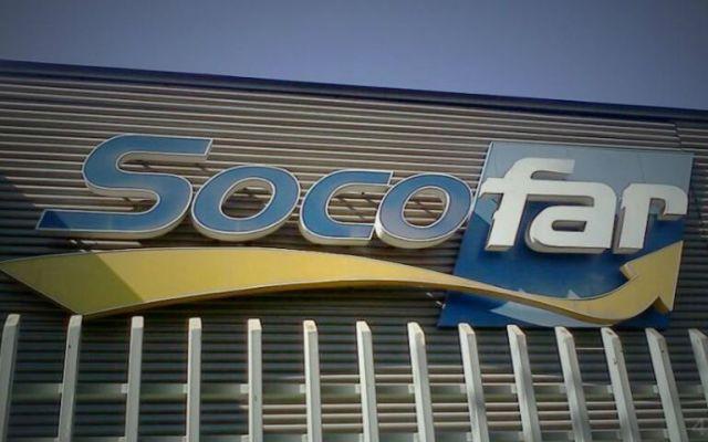 FEMSA adquiere 60% de Grupo Socofar - Foto de Internet
