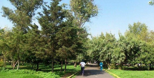 Habrá Domingo Verde en Bosques de Chapultepec y San Juan de Aragón - Bosque de San Juan de Aragón - Foto de El Universal