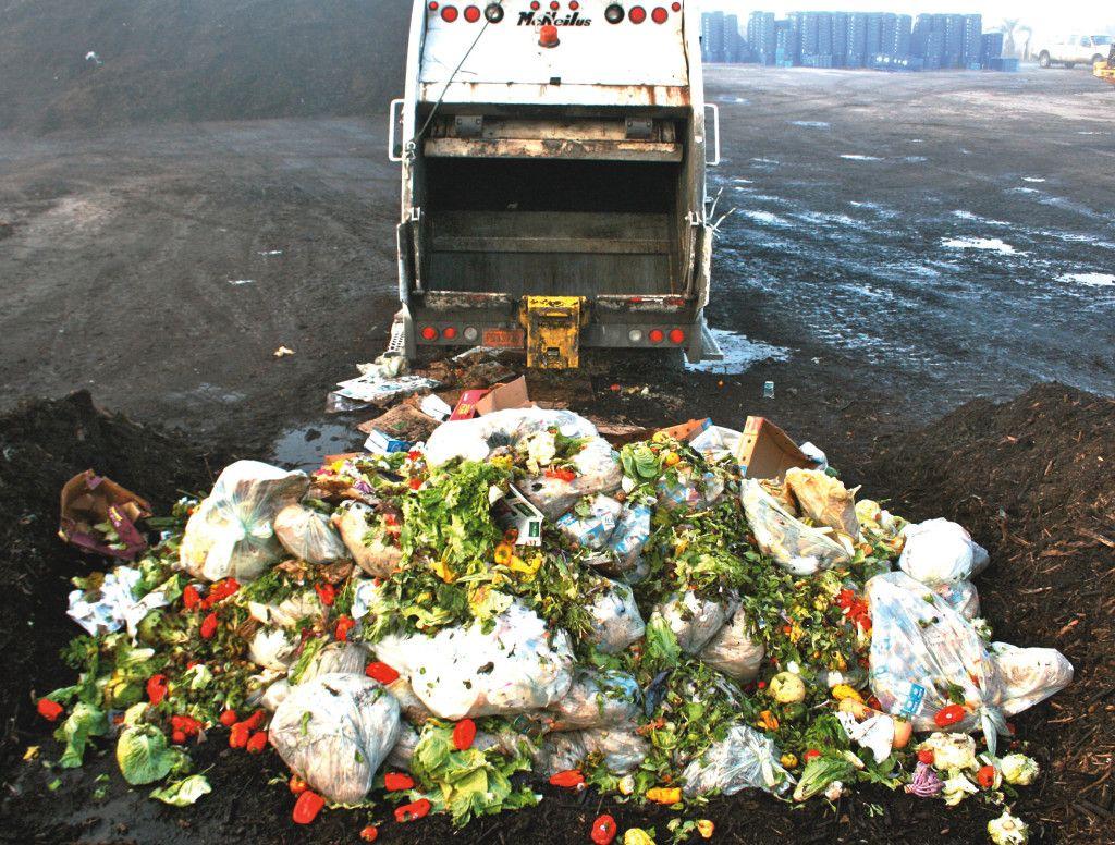 Desperdicio de Alimentos3