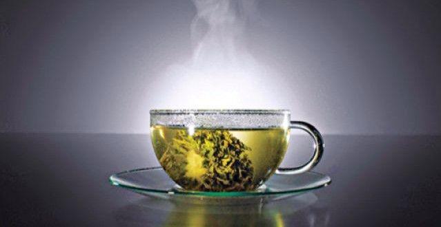 Compuesto del té verde mejora capacidad intelectual en personas con síndrome de Down - Foto de internet.