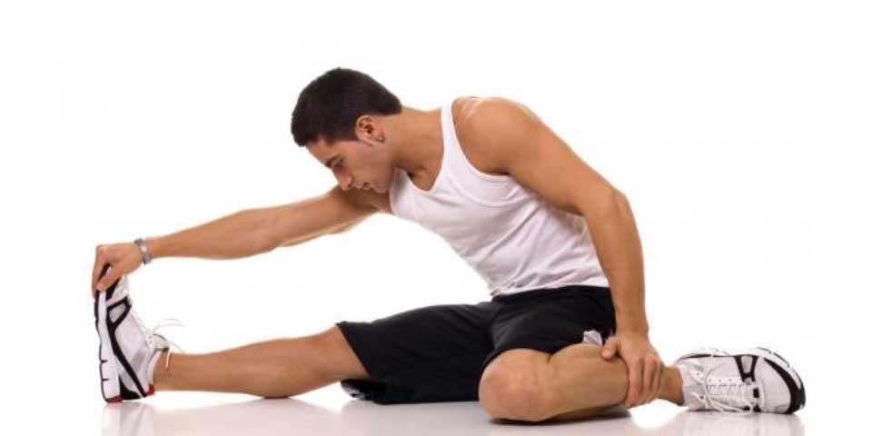 Flexibilidad y fuerza muscular relacion elasticidad entre
