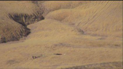 Un piloto muerto tras estrellarse avión de la Fuerza Aérea de Estados Unidos - Foto de Sacramento/cbslocal.