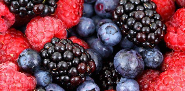 Vino de frutos rojos para el tratamiento de la diabetes - Foto de Agencia Conacyt