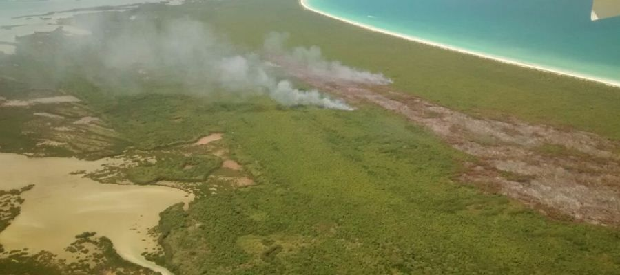Controlado incendio en Isla Holbox: Profepa - Foto de Profepa.