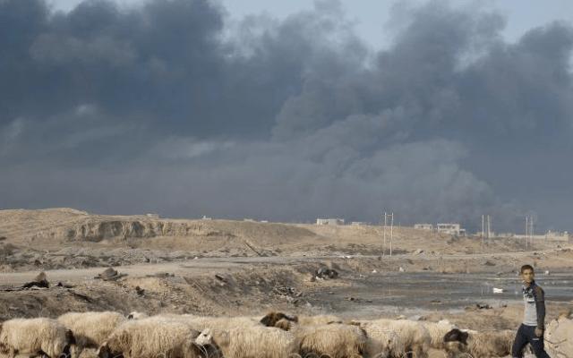 Estado Islámico ejecuta a 232 personas en Mosul