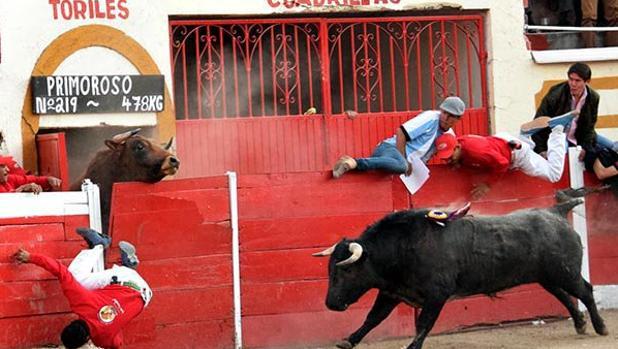 Toro provoca caos en el callejón mientras otro estaba en el ruedo