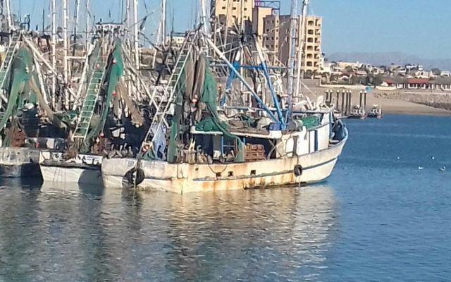 Aseguran tres embarcaciones por pesca ilegal en reserva natural - Foto de @PROFEPA_Mx