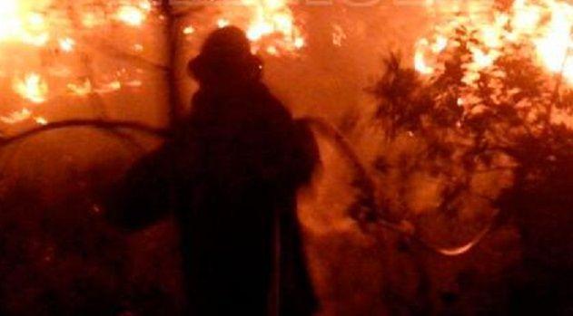 Muere brigadista durante incendio forestal en Jalisco - Foto de Twitter
