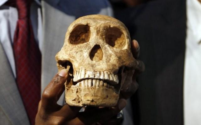 Surgen nuevos datos sobre ancestros del ser humano