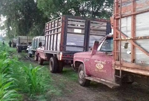 Ladrones de combustible se enfrentan a policías en Hidalgo - Foto de Milenio