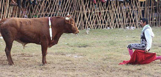 Muere RamiroAlejandro Celis tras cornada - Foto de Con el toro