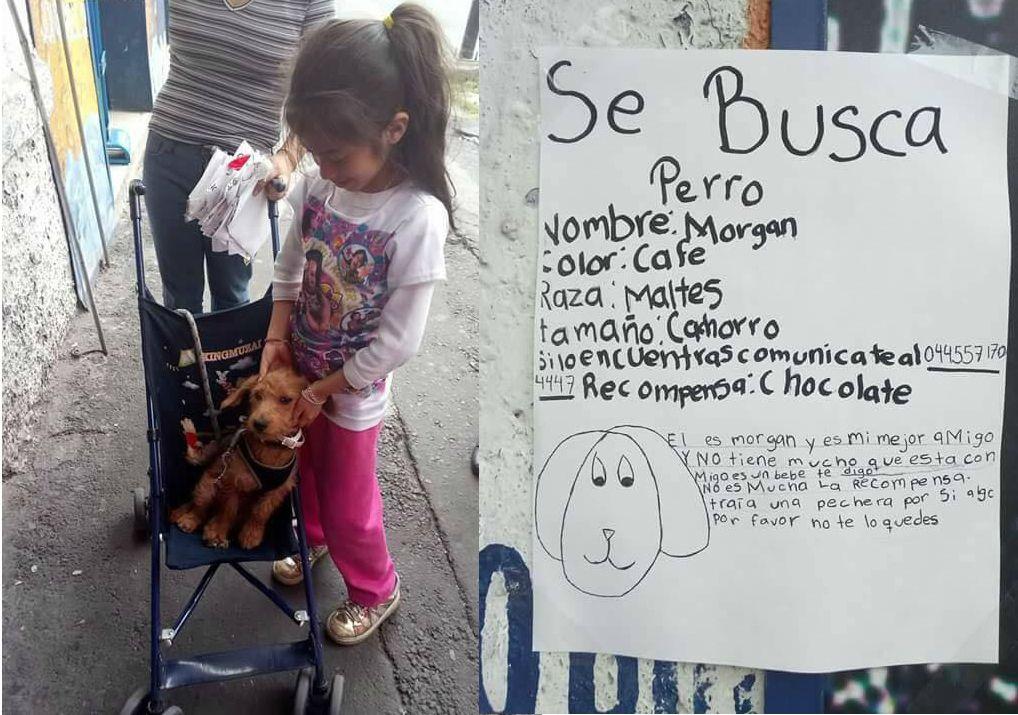 Niña encuentra a su perro con cartel hecho por ella en Cuauhtémoc