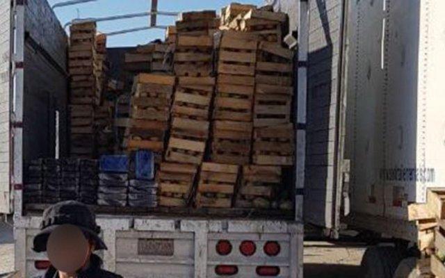 Aseguran más de 18 kilogramos de cristal en Tijuana - Foto de Policía Federal