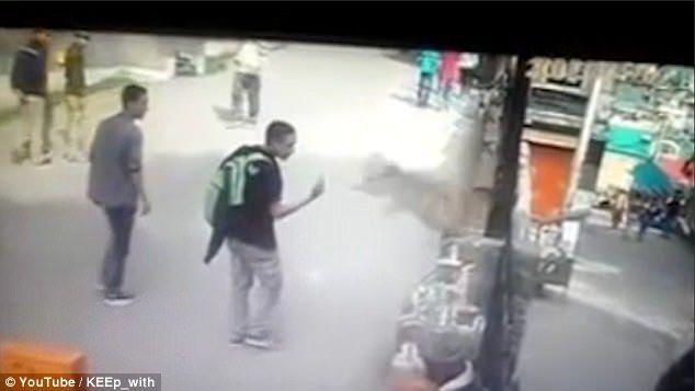 #Video Mono ataca a turista que le enseñó el dedo medio