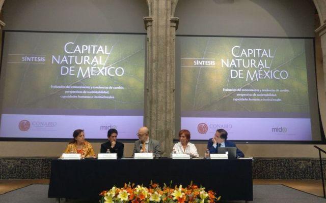 Especies conocidas en México aumentó 20 por ciento en 10 años - Foto de Conabio