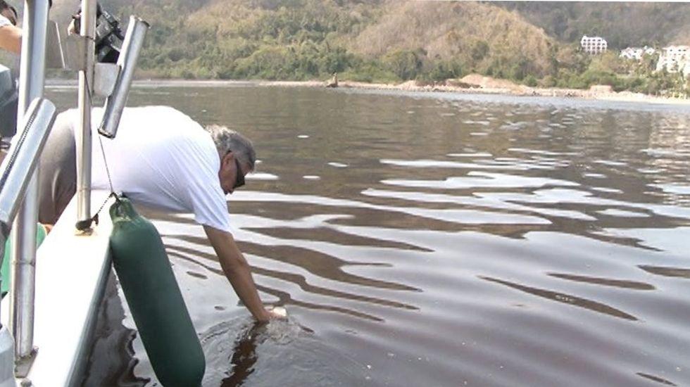 Alertan por presencia de marea roja en Colima - Foto de Cubo Noticias