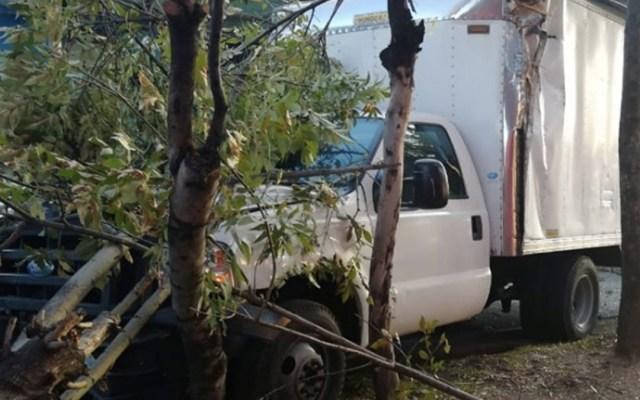 Vehículo de carga choca y derriba árboles en Eje 5 Sur - Foto de Internet