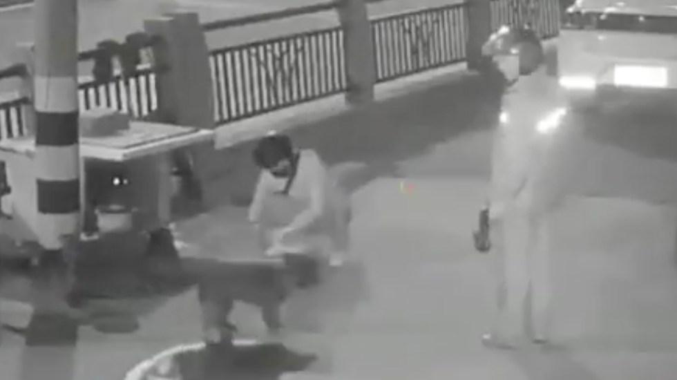 #Video Sujetos roban perros en China con dardos tranqulizantes - Captura de Pantalla