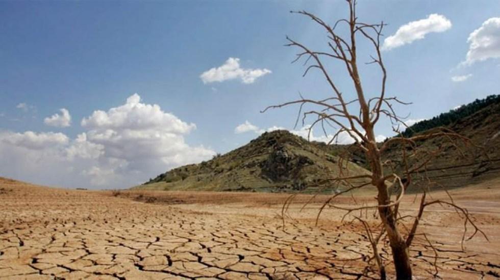 Degradación de suelos aumentaría la pobreza: CNDH - Foto de internet