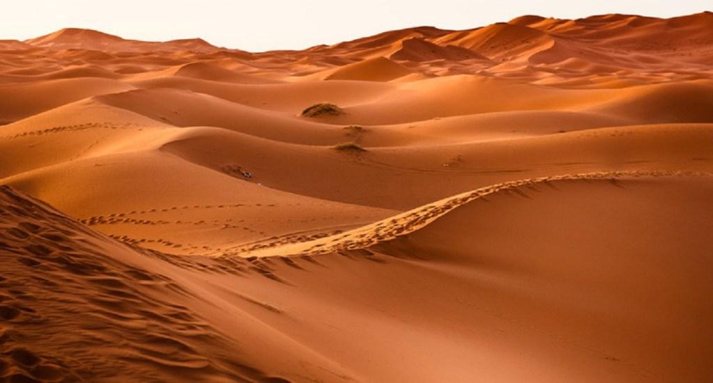 Argelia expulsa a migrantes al desierto del Sahara - Foto de Pixabay