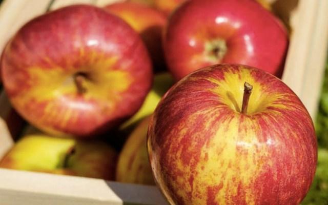 Caen 80 por ciento ventas de manzanas por arancel - Foto de Internet