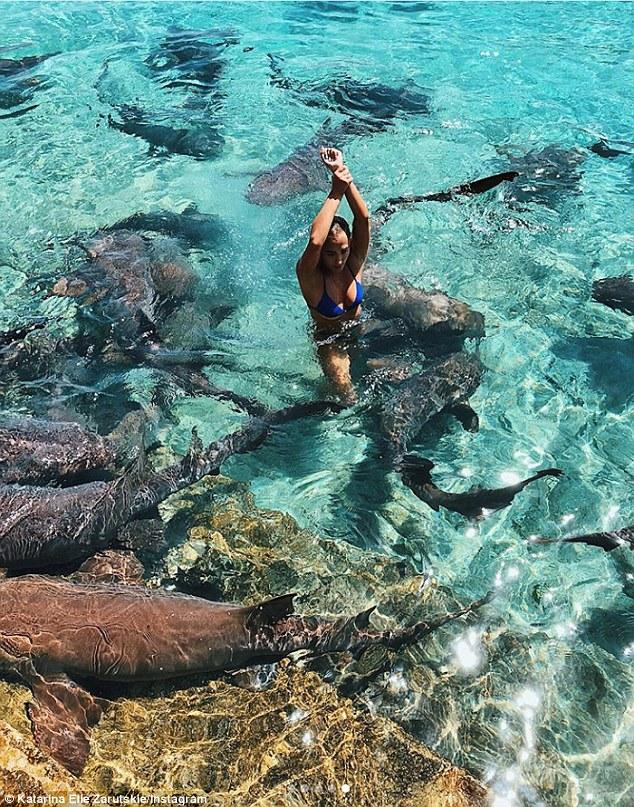 FOTOS: Tiburón ataca a una modelo mientras era fotografiada en las Bahamas