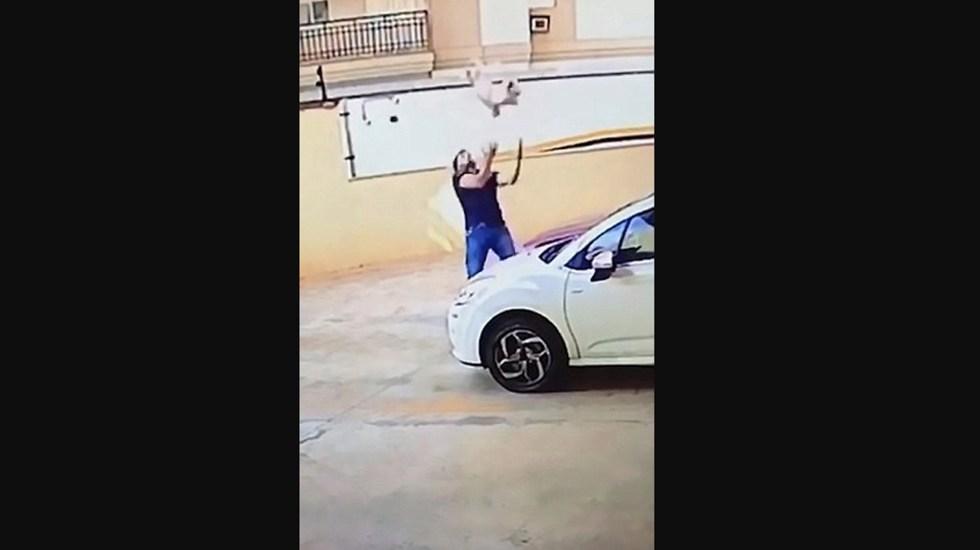 #Video Hombre atrapa a perro que cayó de balcón