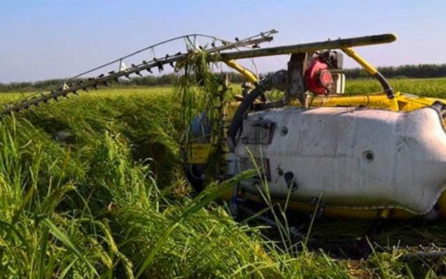 Helicóptero de fumigación se desploma en comunidad de Oaxaca - Foto de Quadratín