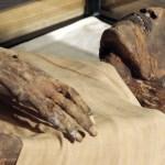 #Video Científicos 'hacen hablar' a momia de hace 3 mil años